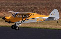 Carbon Cub 15cc ARF - han5065