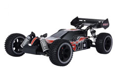 Raid 4WD Brushless Buggy - tar0001